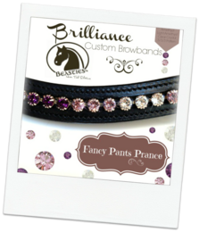 fashionista specialty designed browbands