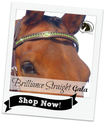 bling browband straight crystal