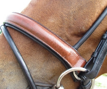 Crocodile Bridle Two Tone Rolled